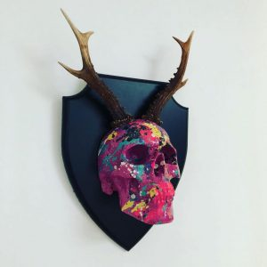 Mounted Antler Skull by Haus of Skulls