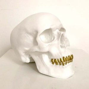 Handmade Skull with Spray Painted Teeth by Haus of Skulls