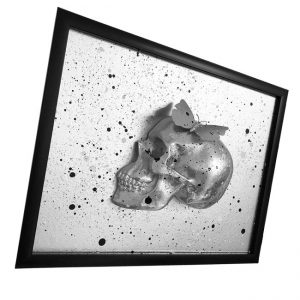 Handmade 3D Butterfly Skull Frame by Haus of Skulls