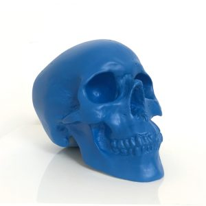 Blue Handmade Skull by Haus of Skulls