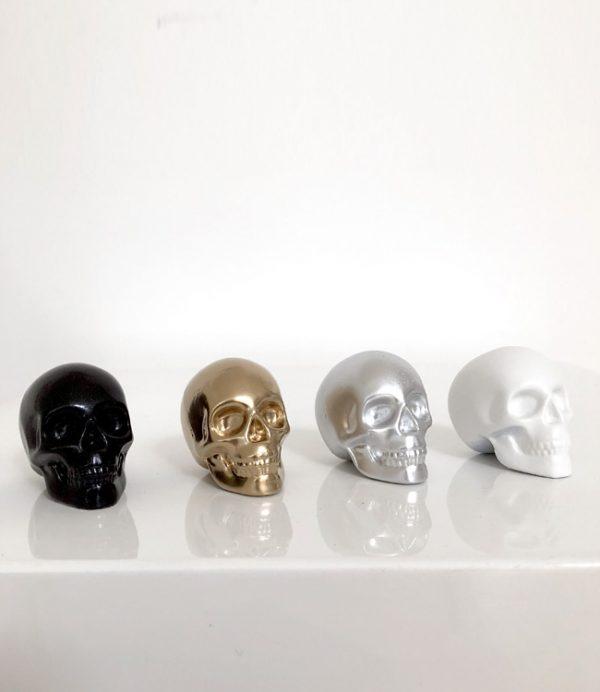 Set of 4 Mini Skulls by Haus of Skulls
