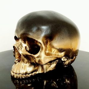 Half Ombré Skull by Haus of Skulls