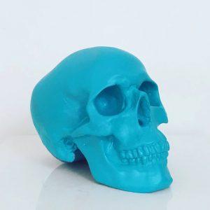 Turquoise Handmade Skull by Haus of Skulls
