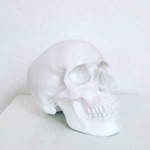 White Handmade Skull by Haus of Skulls