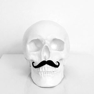 Mr Skull by Haus of Skulls
